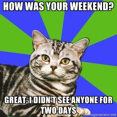Picture of a cat. Text: How was your weekend? Great. I didn't see anyone for two days.